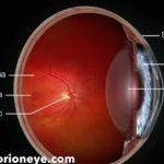 2RT – Retinal Rejuvenation
